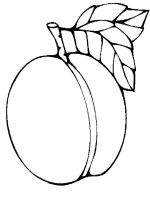 Apricot-fruits-coloring-pages-5