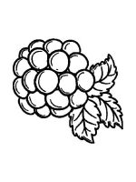 Blackberry-berries-coloring-pages-11