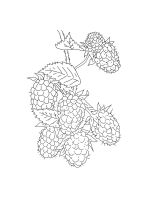 Blackberry-coloring-pages-1