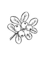 Cowberry-coloring-pages-3