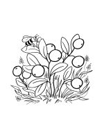 Cowberry-coloring-pages-4