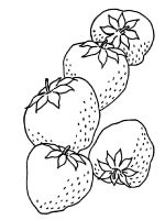 Strawberry-berries-coloring-pages-1