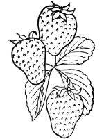 Strawberry-berries-coloring-pages-16