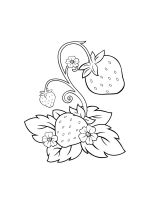 Strawberry-coloring-pages-4