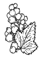currant-berries-coloring-pages-1