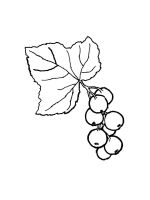 currant-coloring-pages-1