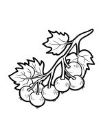 currant-coloring-pages-5