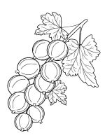 gooseberry-berries-coloring-pages-7