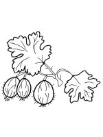 gooseberry-coloring-pages-1