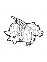 gooseberry-coloring-pages-3