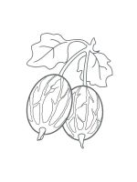 gooseberry-coloring-pages-4