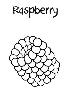 raspberries-berries-coloring-pages-9