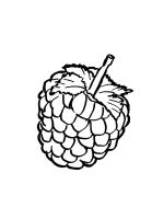 raspberries-coloring-pages-12