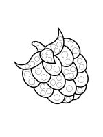 raspberries-coloring-pages-14