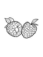 raspberries-coloring-pages-4