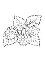 raspberries-coloring-pages-5
