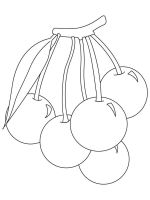 Cherry-fruits-coloring-pages-9