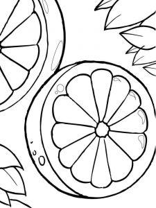 Citrus-fruits-coloring-pages-3