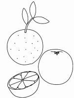 Citrus-fruits-coloring-pages-9