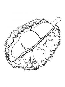 Durian-fruits-coloring-pages-12