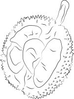 Durian-fruits-coloring-pages-3