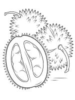 Durian-fruits-coloring-pages-4