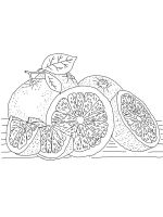 Grapefruit-coloring-pages-1