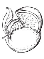 Grapefruit-fruits-coloring-pages-1