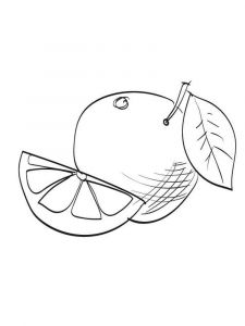 Grapefruit-fruits-coloring-pages-2