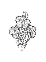 Grapes-coloring-pages-2