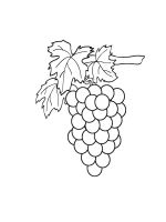 Grapes-coloring-pages-9