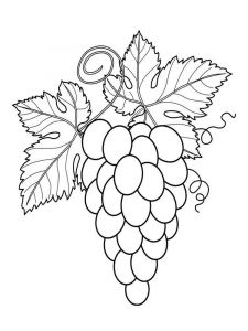 Grapes-fruits-coloring-pages-1