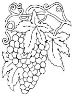 Grapes-fruits-coloring-pages-12