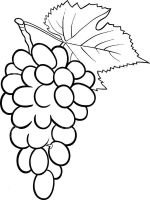 Grapes-fruits-coloring-pages-3