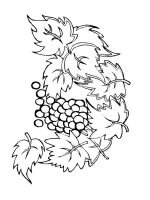 Grapes-fruits-coloring-pages-9