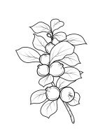 Guavas-coloring-pages-2