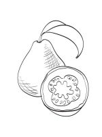 Guavas-fruits-coloring-pages-2