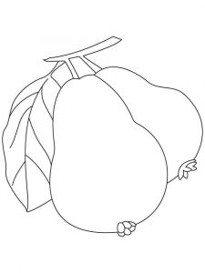 Guavas-fruits-coloring-pages-4