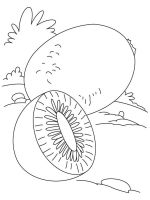 Kiwi-fruits-coloring-pages-4