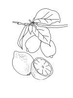 Lemon-coloring-pages-10
