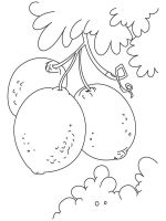 Lemon-fruits-coloring-pages-8