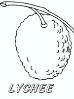 Lychee-fruits-coloring-pages-4
