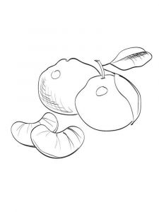 Mandarin(Tangerine)-fruits-coloring-pages-3