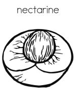Nectarine-fruits-coloring-pages-2