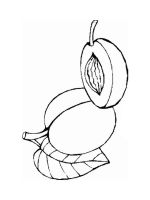 Nectarine-fruits-coloring-pages-7