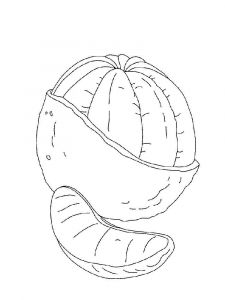 Orange-fruits-coloring-pages-13