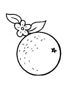 Orange-fruits-coloring-pages-14
