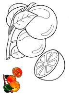 Orange-fruits-coloring-pages-2