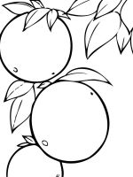 Orange-fruits-coloring-pages-3