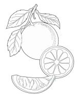 Orange-fruits-coloring-pages-4